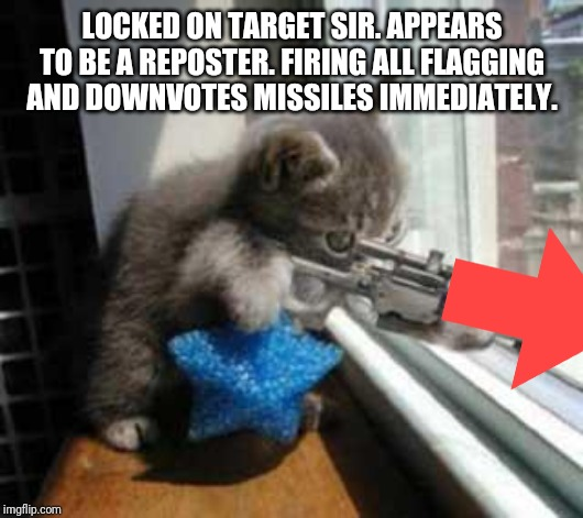 CatSniper |  LOCKED ON TARGET SIR. APPEARS TO BE A REPOSTER. FIRING ALL FLAGGING AND DOWNVOTES MISSILES IMMEDIATELY. | image tagged in catsniper | made w/ Imgflip meme maker