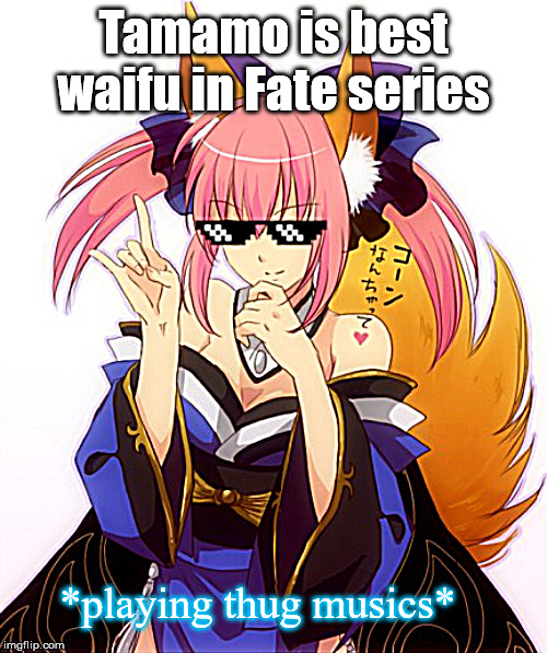 Tamamo Best Waifu |  Tamamo is best waifu in Fate series; *playing thug musics* | image tagged in tamamo thug life,memes,fate/grand order,fate | made w/ Imgflip meme maker