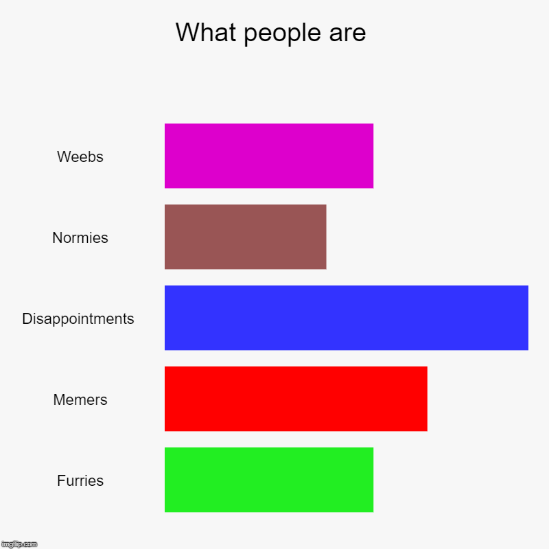 What people are | Weebs, Normies, Disappointments , Memers, Furries | image tagged in charts,bar charts | made w/ Imgflip chart maker