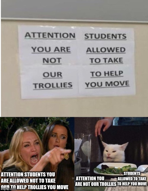 ATTENTION STUDENTS YOU ARE ALLOWED NOT TO TAKE OUR TO HELP TROLLIES YOU MOVE ATTENTION YOU ARE NOT OUR TROLLIES STUDENTS ALLOWED TO TAKE TO  | image tagged in memes,woman yelling at cat,funny signs | made w/ Imgflip meme maker