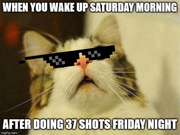 Scared Cat |  WHEN YOU WAKE UP SATURDAY MORNING; AFTER DOING 37 SHOTS FRIDAY NIGHT | image tagged in memes,scared cat,booze,alcohol,alcoholic,hangover | made w/ Imgflip meme maker