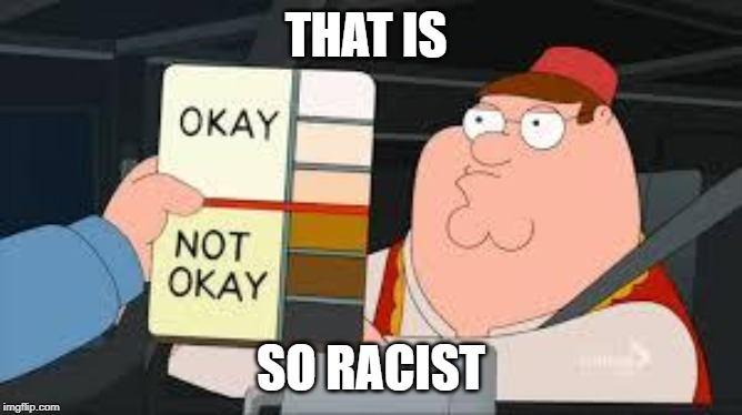 racist peter griffin family guy | THAT IS SO RACIST | image tagged in racist peter griffin family guy | made w/ Imgflip meme maker