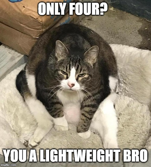 not enough food | ONLY FOUR? YOU A LIGHTWEIGHT BRO | image tagged in not enough food | made w/ Imgflip meme maker