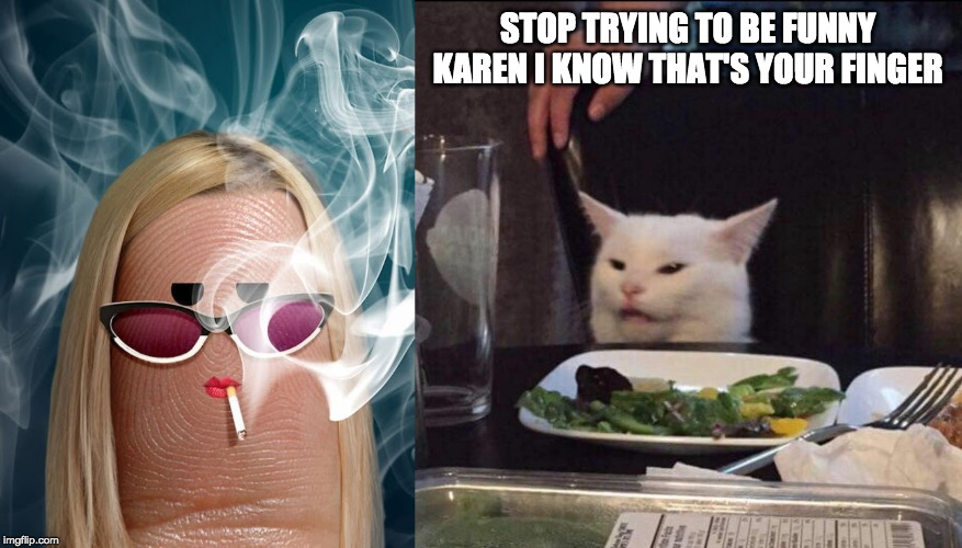 Woman Yelling at Cat | STOP TRYING TO BE FUNNY KAREN I KNOW THAT'S YOUR FINGER | image tagged in woman yelling at cat,cat,yelling | made w/ Imgflip meme maker
