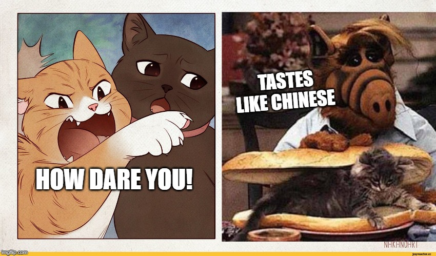 How Smudge the Cat would go over in China! | HOW DARE YOU! TASTES LIKE CHINESE | image tagged in alf,smudge the cat,chinese food | made w/ Imgflip meme maker