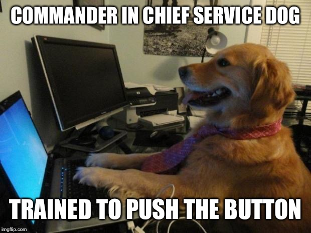 Dog behind a computer | COMMANDER IN CHIEF SERVICE DOG TRAINED TO PUSH THE BUTTON | image tagged in dog behind a computer | made w/ Imgflip meme maker