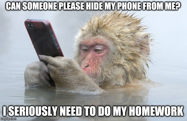 monkey cell phone | CAN SOMEONE PLEASE HIDE MY PHONE FROM ME? I SERIOUSLY NEED TO DO MY HOMEWORK | image tagged in monkey cell phone | made w/ Imgflip meme maker