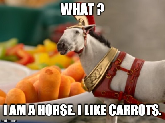 Dr.Pepper chariot horse | WHAT ? I AM A HORSE. I LIKE CARROTS. | image tagged in dr pepper,horse | made w/ Imgflip meme maker