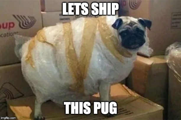 LETS SHIP THIS PUG | image tagged in pugs | made w/ Imgflip meme maker