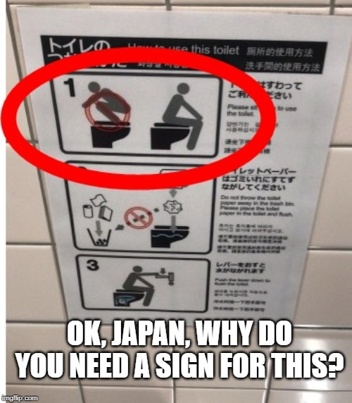 Signs, Signs, Everywhere a Sign |  OK, JAPAN, WHY DO YOU NEED A SIGN FOR THIS? | image tagged in funny signs,sign,toilet,japan | made w/ Imgflip meme maker
