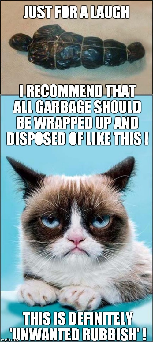 Grumpys Waste Disposal | JUST FOR A LAUGH THIS IS DEFINITELY 'UNWANTED RUBBISH' ! I RECOMMEND THAT ALL GARBAGE SHOULD BE WRAPPED UP AND DISPOSED OF LIKE THIS ! | image tagged in fun,grumpy cat,garbage | made w/ Imgflip meme maker
