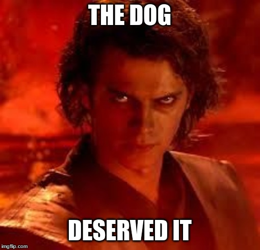 anakin star wars | THE DOG DESERVED IT | image tagged in anakin star wars | made w/ Imgflip meme maker