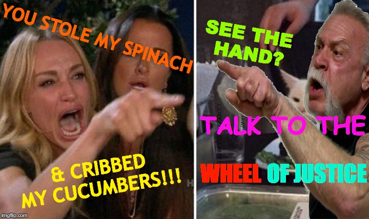 Salad Chopper | YOU STOLE MY SPINACH & CRIBBED MY CUCUMBERS!!! SEE THE    HAND? TALK TO THE OF JUSTICE WHEEL | image tagged in woman yelling at cat american chopper,memes,woman yelling at cat,angry lady cat,american chopper argument,salad cat | made w/ Imgflip meme maker