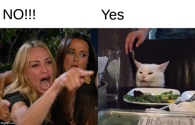 Woman Yelling At Cat Meme | NO!!! Yes | image tagged in memes,woman yelling at cat | made w/ Imgflip meme maker