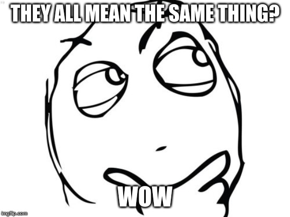 Question Rage Face Meme | THEY ALL MEAN THE SAME THING? WOW | image tagged in memes,question rage face | made w/ Imgflip meme maker