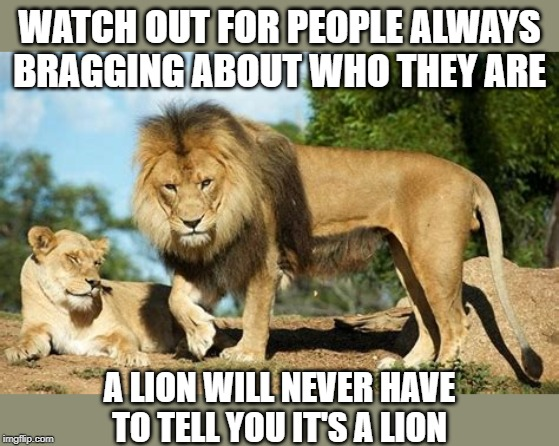 I am a lion | WATCH OUT FOR PEOPLE ALWAYS BRAGGING ABOUT WHO THEY ARE A LION WILL NEVER HAVE TO TELL YOU IT'S A LION | image tagged in lion,bragging,caution | made w/ Imgflip meme maker
