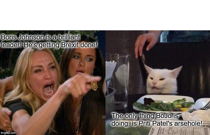 Woman Yelling At Cat Meme |  Boris Johnson is a brilliant leader! He's getting Brexit done! The only thing BoJo is doing, is Priti Patel's arsehole! | image tagged in memes,woman yelling at cat | made w/ Imgflip meme maker