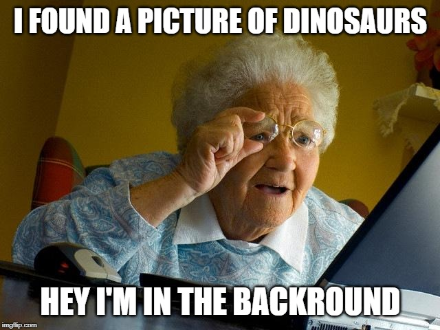 Hey what's a boomer |  I FOUND A PICTURE OF DINOSAURS; HEY I'M IN THE BACKROUND | image tagged in memes,grandma finds the internet | made w/ Imgflip meme maker