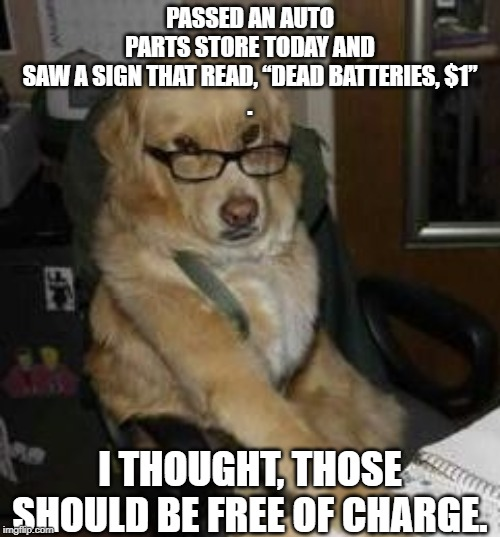 "smart dog | PASSED AN AUTO PARTS STORE TODAY AND SAW A SIGN THAT READ, ""DEAD BATTERIES, $1"". I THOUGHT, THOSE SHOULD BE FREE OF CHARGE. 