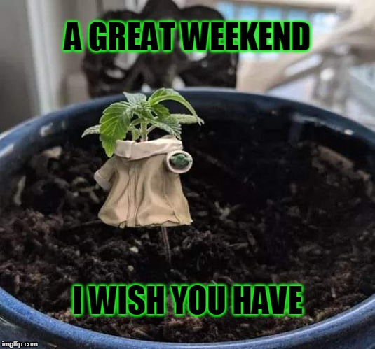 Baby Yoda Weed | A GREAT WEEKEND I WISH YOU HAVE | image tagged in weekend | made w/ Imgflip meme maker