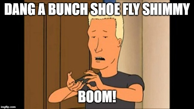 Boomhauer | DANG A BUNCH SHOE FLY SHIMMY BOOM! | image tagged in boomhauer | made w/ Imgflip meme maker