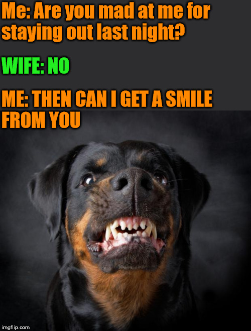 She gets angry, she stays angry for a while. |  Me: Are you mad at me for  staying out last night? WIFE: NO; ME: THEN CAN I GET A SMILE  FROM YOU | image tagged in dog growl,angry wife | made w/ Imgflip meme maker