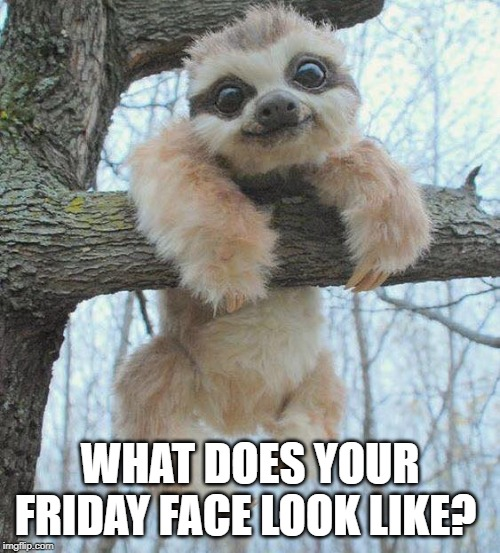 WHAT DOES YOUR FRIDAY FACE LOOK LIKE? | image tagged in friday | made w/ Imgflip meme maker