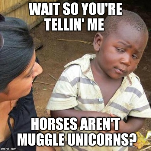 Third World Skeptical Kid | WAIT SO YOU'RE TELLIN' ME HORSES AREN'T  MUGGLE UNICORNS? | image tagged in memes,third world skeptical kid | made w/ Imgflip meme maker