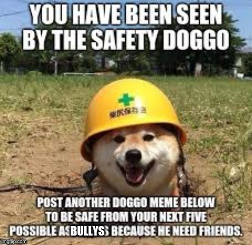 image tagged in doggo,shiba inu,cute,hard helmet,fun,japan | made w/ Imgflip meme maker