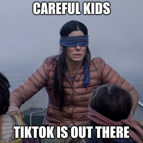 Bird Box | CAREFUL KIDS TIKTOK IS OUT THERE | image tagged in memes,bird box | made w/ Imgflip meme maker