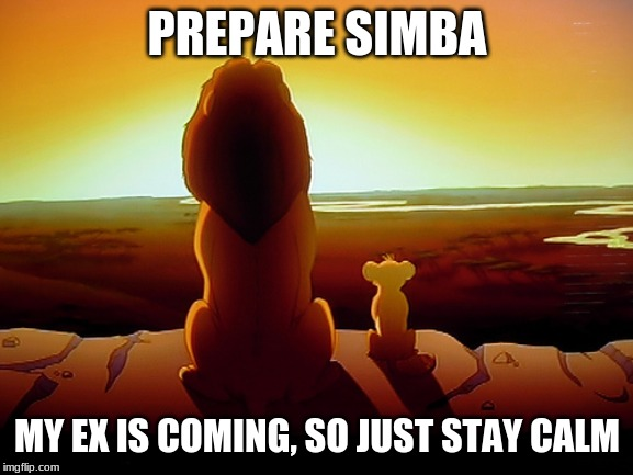Lion King | PREPARE SIMBA MY EX IS COMING, SO JUST STAY CALM | image tagged in memes,lion king | made w/ Imgflip meme maker
