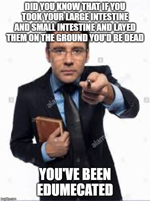 You've Been Edumecated | DID YOU KNOW THAT IF YOU TOOK YOUR LARGE INTESTINE AND SMALL INTESTINE AND LAYED THEM ON THE GROUND YOU'D BE DEAD YOU'VE BEEN EDUMECATED | image tagged in facts | made w/ Imgflip meme maker