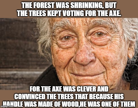 The Democratic Party is the axe |  THE FOREST WAS SHRINKING, BUT THE TREES KEPT VOTING FOR THE AXE. FOR THE AXE WAS CLEVER AND CONVINCED THE TREES THAT BECAUSE HIS HANDLE WAS MADE OF WOOD,HE WAS ONE OF THEM | image tagged in falsehoods,democratic party,the axe fable | made w/ Imgflip meme maker