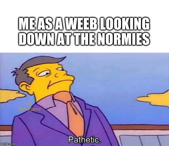 ME AS A WEEB LOOKING DOWN AT THE NORMIES | image tagged in pathetic,lol,weeb | made w/ Imgflip meme maker