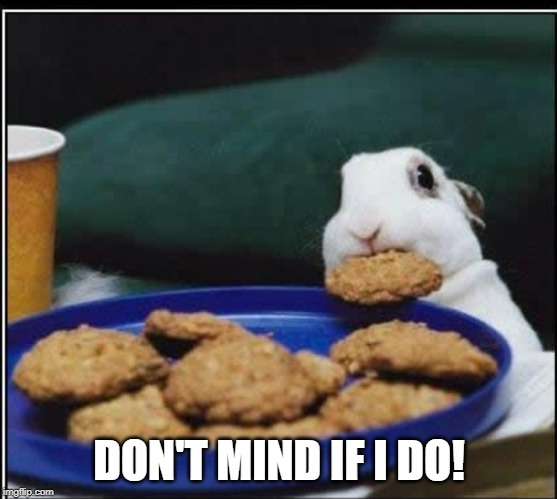 Bunny eating cookie | DON'T MIND IF I DO! | image tagged in bunny eating cookie | made w/ Imgflip meme maker