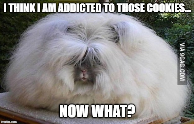 I THINK I AM ADDICTED TO THOSE COOKIES... NOW WHAT? | made w/ Imgflip meme maker