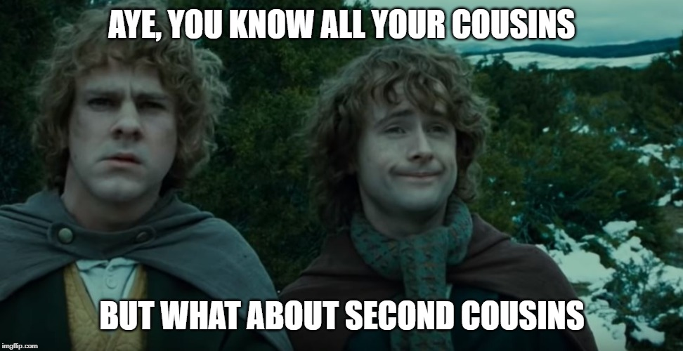 What about second breakfast? | AYE, YOU KNOW ALL YOUR COUSINS BUT WHAT ABOUT SECOND COUSINS | image tagged in what about second breakfast | made w/ Imgflip meme maker