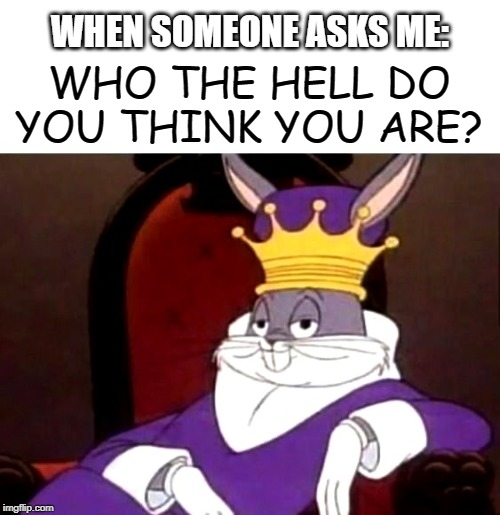 King Bugs | WHEN SOMEONE ASKS ME: WHO THE HELL DO YOU THINK YOU ARE? | image tagged in funny memes | made w/ Imgflip meme maker