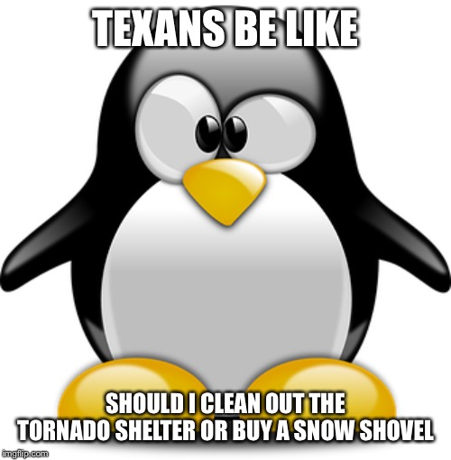 Confused Penguin | TEXANS BE LIKE SHOULD I CLEAN OUT THE TORNADO SHELTER OR BUY A SNOW SHOVEL | image tagged in confused penguin | made w/ Imgflip meme maker
