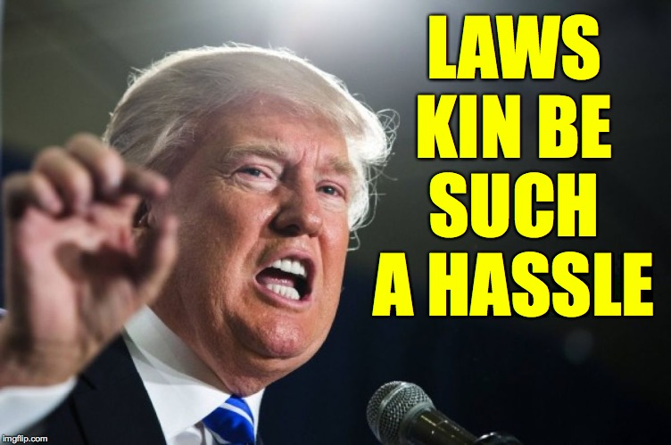 donald trump | LAWS KIN BE SUCH A HASSLE | image tagged in donald trump | made w/ Imgflip meme maker