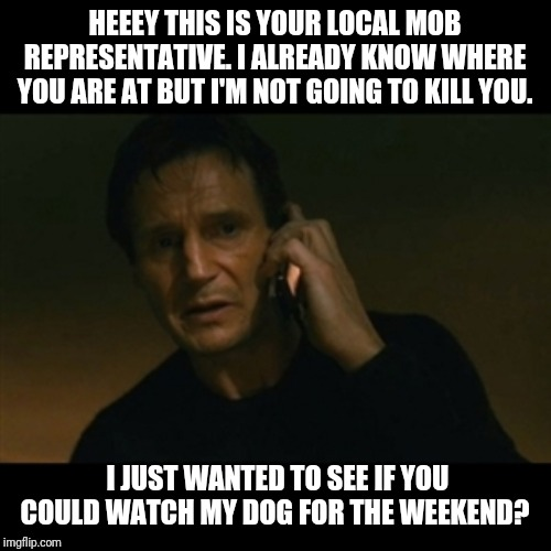 Liam Neeson Taken Meme | HEEEY THIS IS YOUR LOCAL MOB REPRESENTATIVE. I ALREADY KNOW WHERE YOU ARE AT BUT I'M NOT GOING TO KILL YOU. I JUST WANTED TO SEE IF YOU COUL | image tagged in memes,liam neeson taken,the mob,do a favor | made w/ Imgflip meme maker
