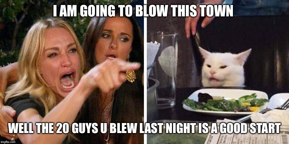 Smudge the cat | I AM GOING TO BLOW THIS TOWN WELL THE 20 GUYS U BLEW LAST NIGHT IS A GOOD START | image tagged in smudge the cat | made w/ Imgflip meme maker