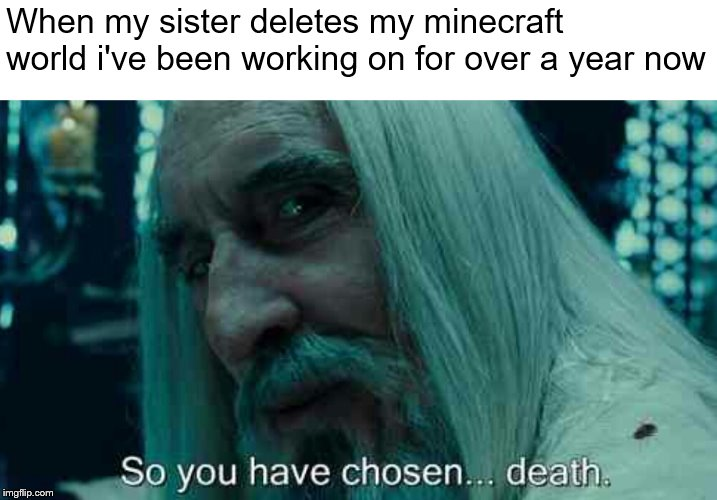 So you have chosen death | When my sister deletes my minecraft world i've been working on for over a year now | image tagged in so you have chosen death | made w/ Imgflip meme maker