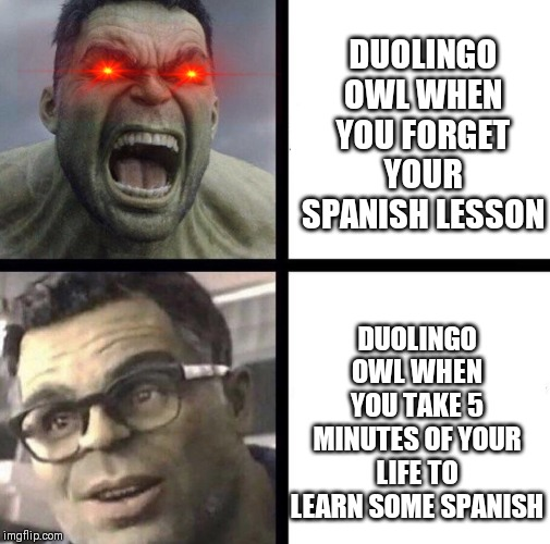 He will find you | DUOLINGO OWL WHEN YOU FORGET YOUR SPANISH LESSON DUOLINGO OWL WHEN YOU TAKE 5 MINUTES OF YOUR LIFE TO LEARN SOME SPANISH | image tagged in professor hulk,duolingo,memes,funnny,duolingo bird | made w/ Imgflip meme maker
