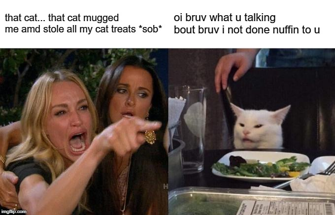 Woman Yelling At Cat Meme | that cat... that cat mugged me amd stole all my cat treats *sob* oi bruv what u talking bout bruv i not done nuffin to u | image tagged in memes,woman yelling at cat | made w/ Imgflip meme maker
