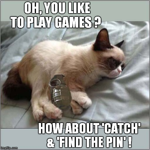 Grumpy Combination Game | OH, YOU LIKE TO PLAY GAMES ? HOW ABOUT 'CATCH' & 'FIND THE PIN' ! | image tagged in fun,grumpy cat,grenade | made w/ Imgflip meme maker