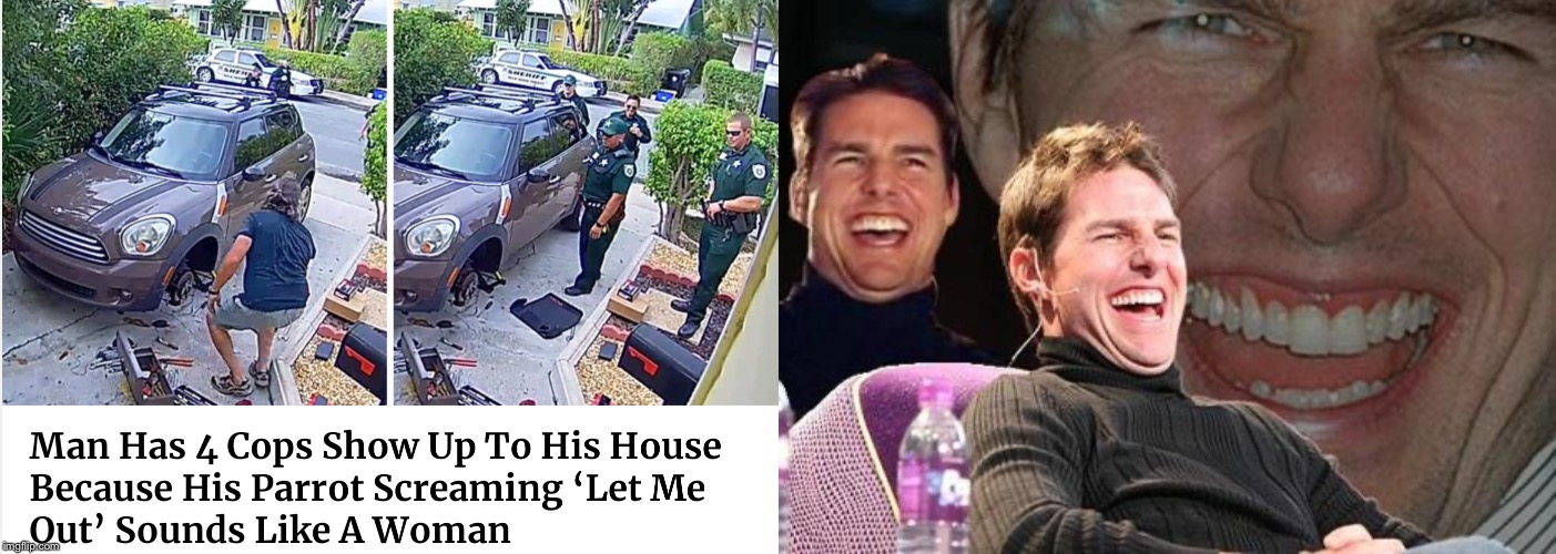 image tagged in tom cruise laugh | made w/ Imgflip meme maker