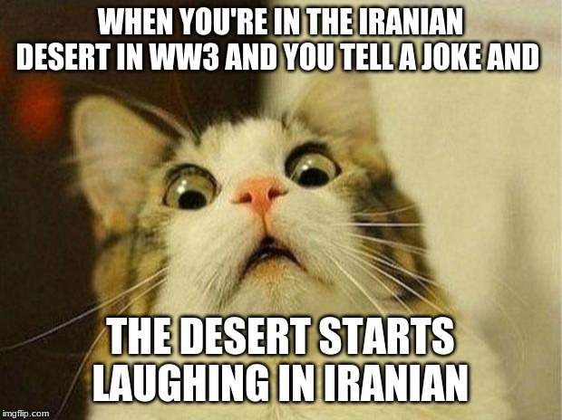 Scared Cat Meme | WHEN YOU'RE IN THE IRANIAN DESERT IN WW3 AND YOU TELL A JOKE AND THE DESERT STARTS LAUGHING IN IRANIAN | image tagged in memes,scared cat,ww3 | made w/ Imgflip meme maker