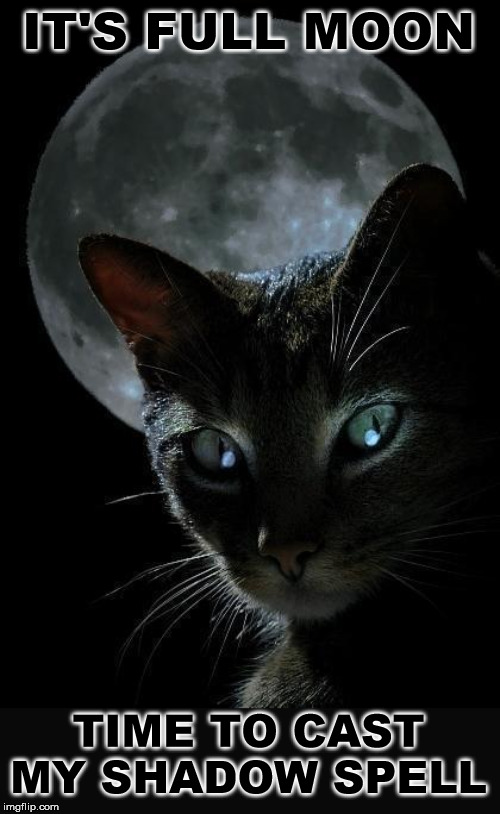 IT'S FULL MOON TIME TO CAST MY SHADOW SPELL | made w/ Imgflip meme maker