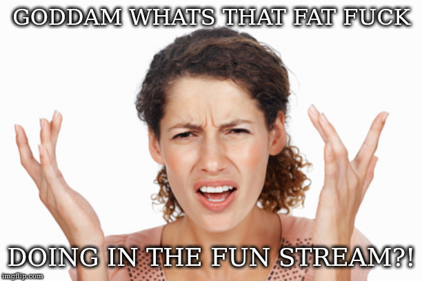 Indignant | GODDAM WHATS THAT FAT F**K DOING IN THE FUN STREAM?! | image tagged in indignant | made w/ Imgflip meme maker